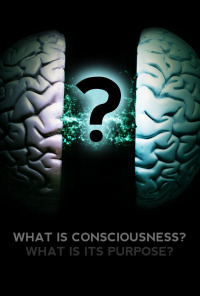 What Is Consciousness? What Is Its Purpose? (2017)